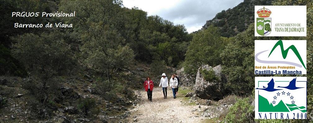 imagen_PRGU05-Barranco-de-Viana_prov.jpg